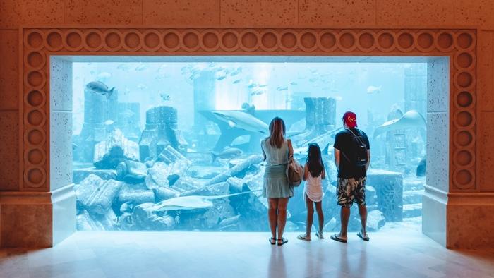 Atlantis the Palm aquarium by Dancing the Earth