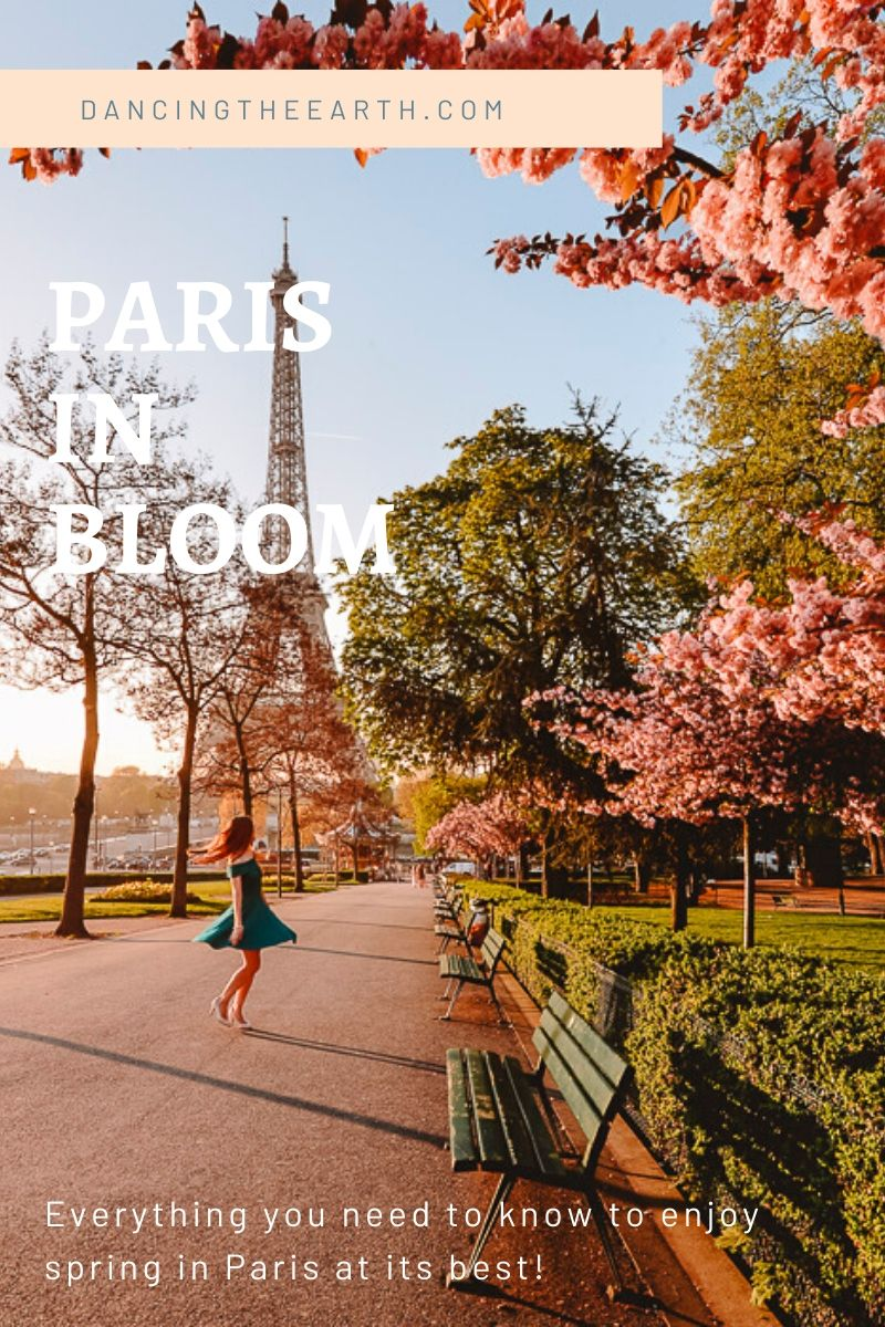 Dancing the Earth Spring in Paris