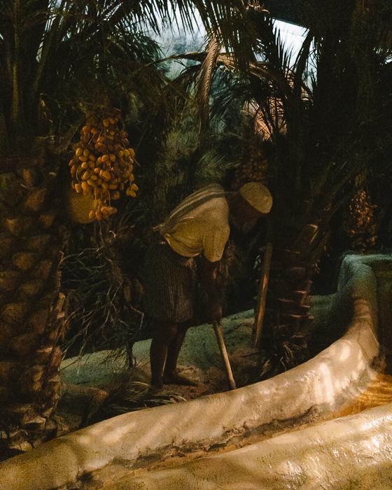 Dubai museum desert life by Dancing the Earth