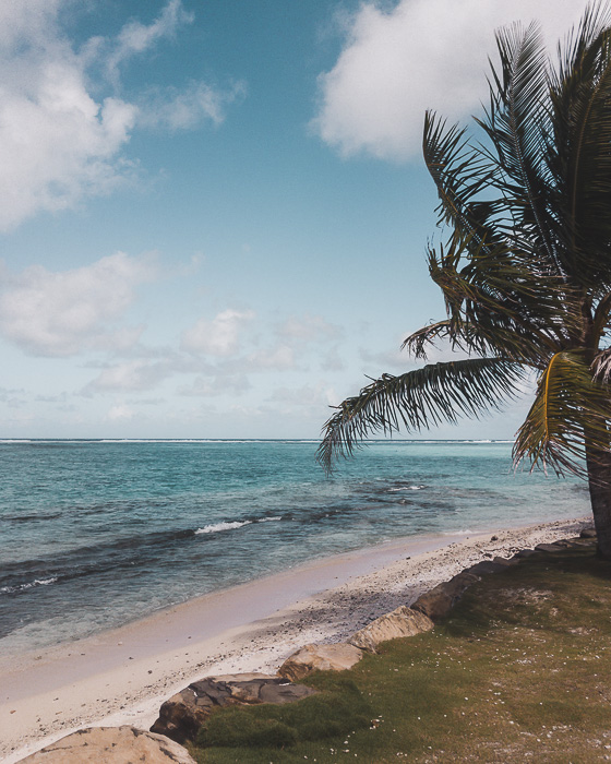 Palm tree white sand beach and turquoise sea in Huahine by Dancing the Earth