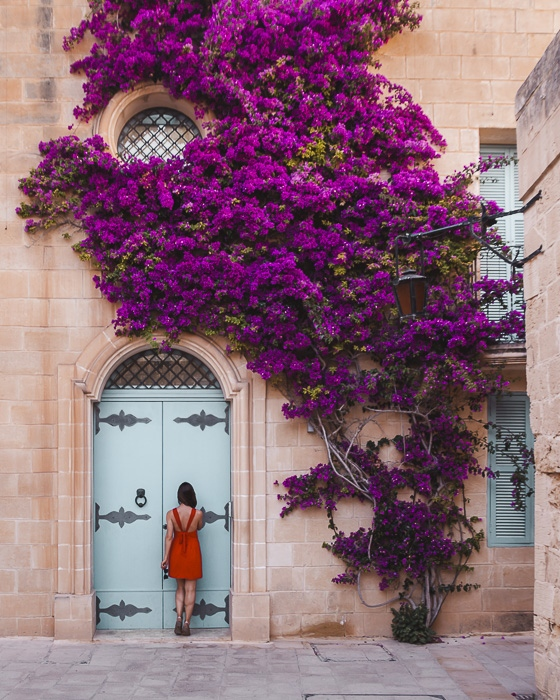 Malta travel guide Mdina bougainvilleas house by Dancing the Earth