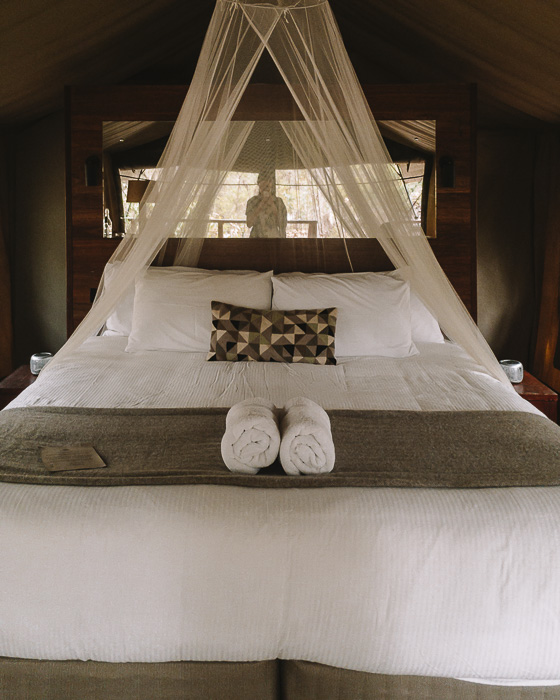Paperbark Camp deluxe tent bed by Dancing the Earth