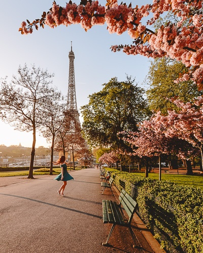 Spring in Paris Eiffel Tower and cherry blossoms by Dancing the Earth