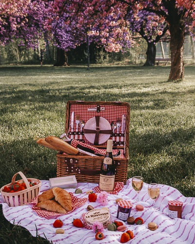 picnic under the cherry blossoms in Parc de Sceaux by Dancing the Earth
