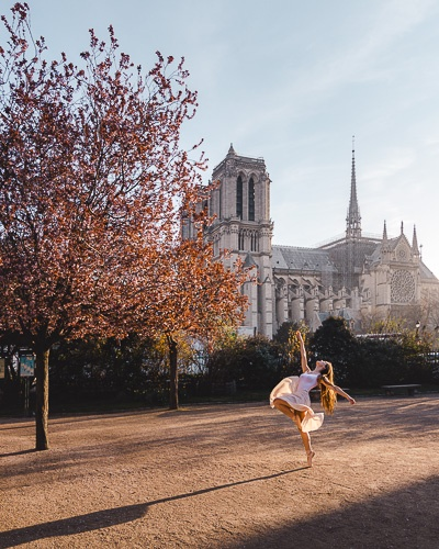Spring in Paris plums in square René Viviani by Dancing the Earth