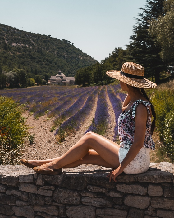 Senanque Abbey and lavender fields by Dancing the Earth