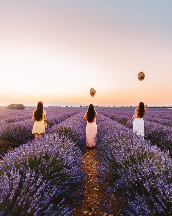 Provence lavender fields at sunset by Dancing the Earth