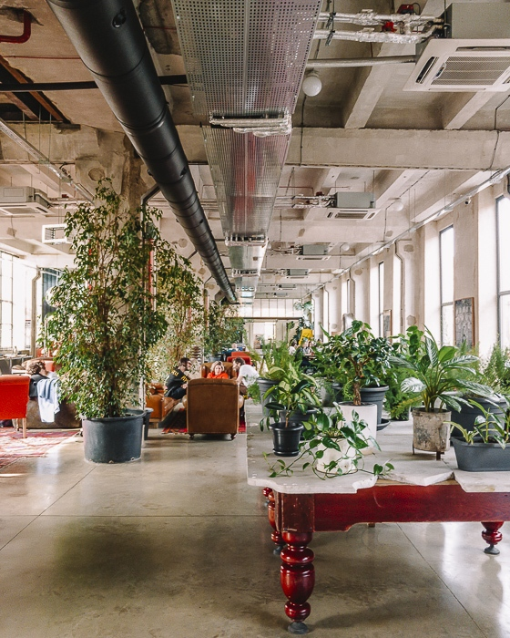 Tbilisi La Fabrika coworking space by Dancing the Earth