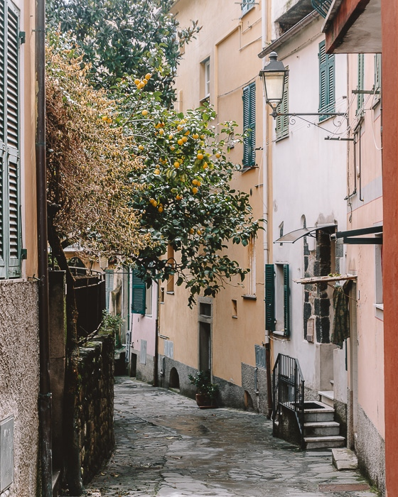 Street in Monterosso, Liguria and Cinque Terre travel guide by Dancing the Earth