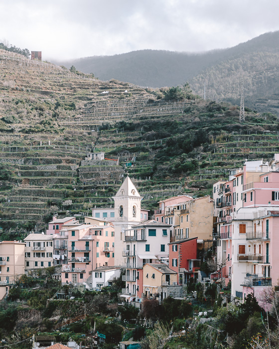 Vineyards of Riomaggiore, Liguria and Cinque Terre travel guide by Dancing the Earth
