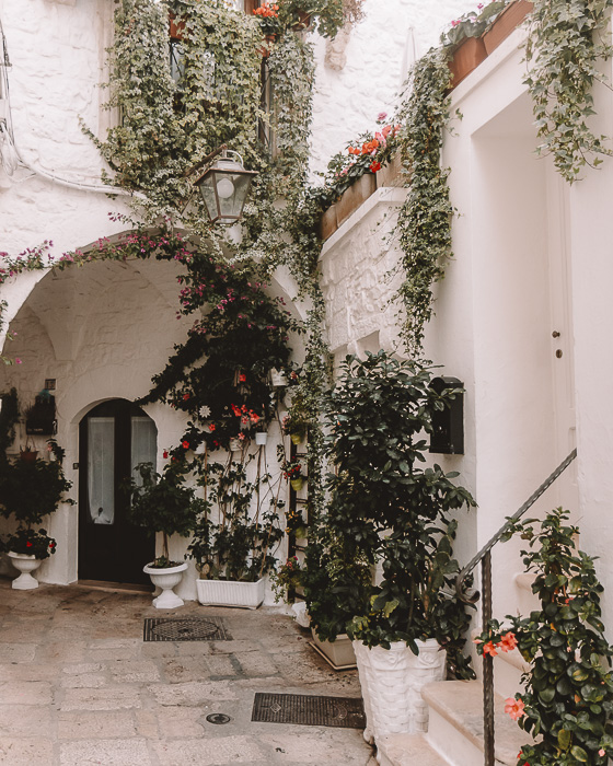 Flower wall in Cisternino